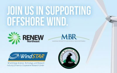 Federal Public Engagement Process Reveals Broad Public Support for Vineyard Wind and Offshore Wind Power Development